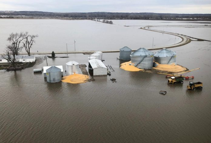 U.S. disaster aid won't cover crops drowned by Midwest floods