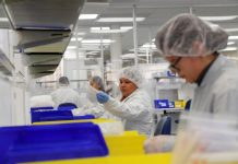 U.S. ventilator makers pull out all stops to fight coronavirus